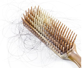 Hair Loss - Brush